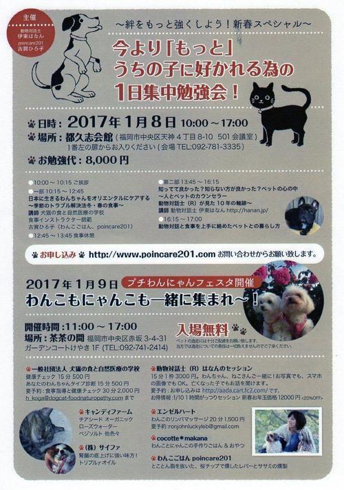 わんちゃん勉強会170108149.jpg